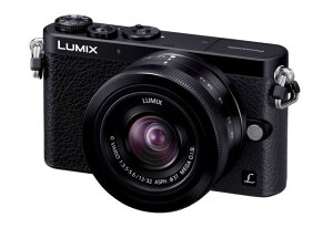 LUMIX DMC-GM1K-K レンズキット ブラック【新品】【在庫品】[送料無料 (一部特殊地域を除く)]