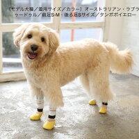 犬用の靴下SkitterPLUS(2個入)