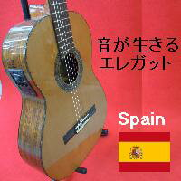 MANUELFERNANDEZエレガットギター