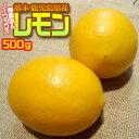 【無農薬&ノーワックス】熊本県産 わけありレモン500g