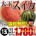 2つ以上購入で送料無料!ギフト・のし対応!贈答用にどうぞ熊本県産 スイカ 2Lサイズ1玉