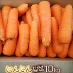 無農薬人参10kg箱【送料無料】【複数箱ご購入の場合は値引きあります】【規格外品】【無農薬】【にんじんジュース】