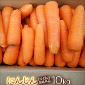 無農薬人参10kg箱【送料無料】【規格外品】【無農薬】【にんじんジュース】