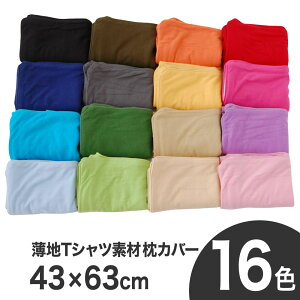 枕カバー 43×63/レビューを書いて送料無料!さらに1万円分プレゼントのWチャンス♪ メール便対...