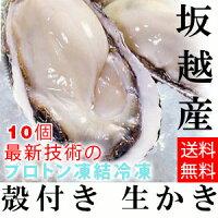 ★大粒新鮮冷凍サムライオイスタ—★坂越かき冷凍殻付牡蠣10個(加熱用)[送料無料]★驚きのぷりぷりで美味しい牡蠣♪熱を加えても縮まない魔法の牡蠣。