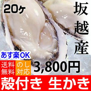 赤穂市坂越産の牡蠣 殻付き 20個 生食用