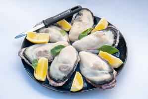 新鮮の牡蠣