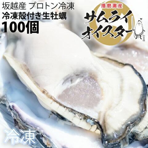 ★大粒新鮮冷凍サムライオイスタ—★坂越かき 冷凍殻付牡蠣お得な100個セット♪(加熱用)[送料無料]★驚きのぷりぷりで美味しい牡蠣♪熱を加えても縮まない魔法の牡蠣。