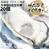 ★大粒新鮮冷凍サムライオイスタ—★坂越かき 冷凍殻付牡蠣20個(加熱用)[送料無料]★驚きのぷりぷりで美味しい牡蠣♪熱を加えても縮まない魔法の牡蠣。