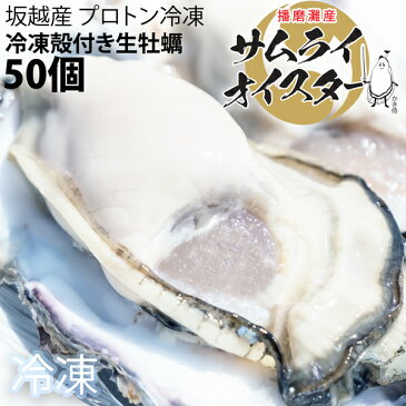★大粒新鮮冷凍サムライオイスタ—★坂越かき 冷凍殻付牡蠣50個(加熱用)[送料無料]★驚きのぷりぷりで美味しい牡蠣♪熱を加えても縮まない魔法の牡蠣。