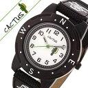 【小学生のお子様にはこれ】カクタス 時計 CACTUS 時計...