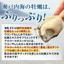 販売実績15年突破!牡蠣亜鉛といえば「海乳EX」(1ヶ月分) 牡蠣 国内産 牡蠣サプリ カキ サプリ 亜鉛サプリ 父の日 3