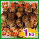 ワンランク上の高品質 【産地よりAIR便にて入荷!】中国産生鮮 松茸 中つぼ(HAM)1kg