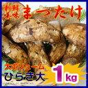 【産地よりAIR便で入荷!】中国産生鮮 松茸 ひらき大サイズ(Lサイズ) 1kg