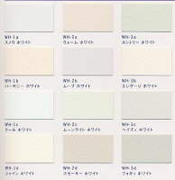 Jカラーホワイトシリーズ2L(ターナー色彩)