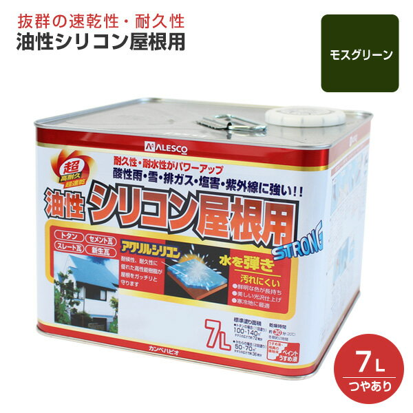 14L 油性シリコン屋根用 つやあり 【送料無料】 各色 (カンペハピオ/ペンキ/塗料)