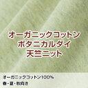 【生地サンプル】 オーガニックコットン ボタニカルダイ天竺ニット