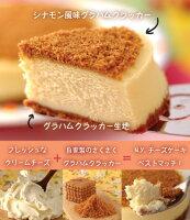 ニューヨークチーズケーキ400【チーズケーキのパパジョンズ】