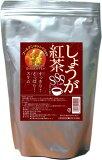 『しょうが紅茶 6gX21包』【チューブの生姜 1/2本分相当】