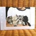 USAPumpernickelPressバースディカード超大判四匹の子猫ちゃんGroupShot