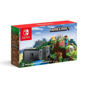 Nintendo Switch Minecraftセット 新品 NSW ニンテンドースイッチ 本体 (HAC-S-KAAGE)