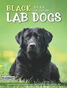 Black Lab Dogs Calendar 2022: Gifts for Friends and Family with 18-month Monthly Calendar in 8.5x11 inchの商品画像