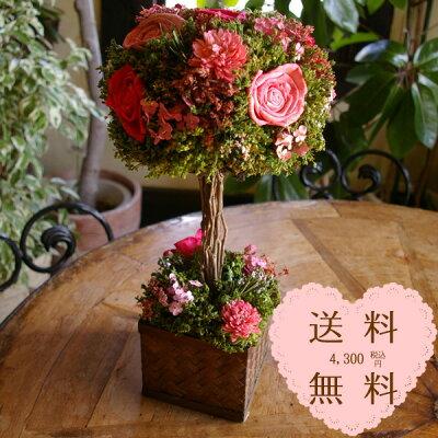 トピアリー ●楽天1位● 花 ドライフラワー ギフト 送料無料 プレゼント ハンドメイド ナチュラ...