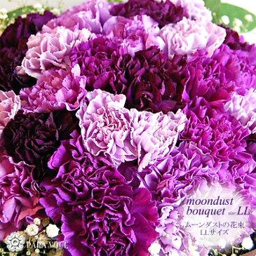 【誕生日 花束】 ムーンダストの花束(LL 48本)【花瓶が要らない花束 プレゼント 退職祝い 誕生日プレゼント 花 誕生日 記念日 古希 古稀 喜寿 結婚記念日 退職祝い 青 紫 カーネーション 生花 母の日 ギフト 早割】