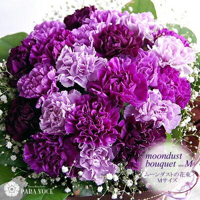 カーネーション 紫 ムーンダストの花束(M 24本)【花瓶が要らない花束 花 ギフト 翌...