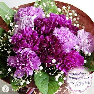 【★楽天1位★ 花瓶が要らない♪】ムーンダストの花束(S 12本) 【送料無料 花 カーネーシ…