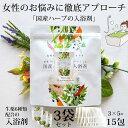 入浴剤 疲労 温泉 国産ハーブの入浴剤 20g×5包×3袋セット お風呂……