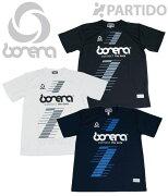 BNR-TDT002