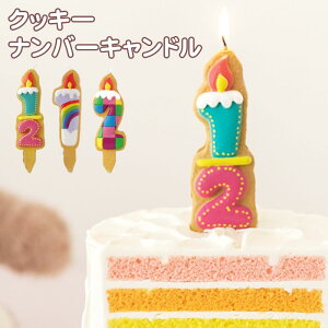 お誕生日 クッキー ナンバーキャンドル ろうそく バースデーケーキ 数字 かわいい キッズ お祝い 飲食店 記念日 ウェディング ハーフバースデー 【10点までネコポスOK あす楽】