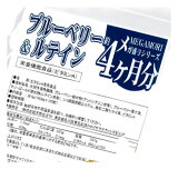【大感謝価格 】『メガ盛りブルーベリー&ルテインサプリ約4ヵ月分 120粒』【注文から1-2か月ぐらいで出荷】