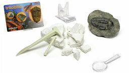 大感謝価格『GEOWORLD 化石発掘 三葉虫』『直送品。代引・・同梱・返品・キャンセル・割引不可』 三葉虫の化石を発掘しよう