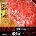 【メーカー直送・大感謝価格】肉汁豊富な赤身肉ステーキの王道飛騨牛『A5...