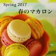 【送料無料 期間限定】春のマカロン「マカロン・プランタニエ」(12個入)[新学期のお祝い ギフト お取り寄せ スイーツ]