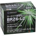 ブロード [取寄7]BRZ6-L2 黒(ブラック) [4536638300411]