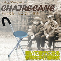 【送料無料】椅子搭載歩行補助杖軽量約1kgいつでもどこでも一休み休憩持ち運び老人お年寄りTEC-ISUTUED