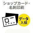 100枚■【名刺 オンデマンド印刷】 アートポスト180kg/納期1日/片面フルカラー