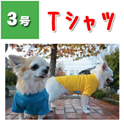 【ハヤブサ】 スタンダード Tシャツ 3号