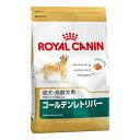 【ロイヤルカナン】 ブリード ゴールデンレトリバー 成犬・高齢犬用 3kg