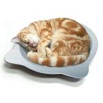 [本]【マルカン】ひんやりクール猫鍋