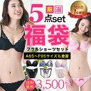 【送料無料 A65〜F95】福袋 おまかせ ブラジャー&ショーツ5組入...