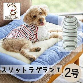 SippoleスリットラグランT2号犬ウェア服カジュアルボーダーレッドグリーンお揃い小型犬かわいいおしゃれシンプルしっぽるPEPPYペピイ