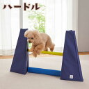 正規輸入品 アメリカ ウエストポウデザイン(West Paw Design) 犬用玩具 ゾゴフレックス ジスク L ZG031 ブルー・AQA