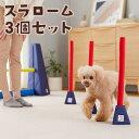 Sippoleアジリティ スラローム3個セット 犬 おもちゃ 室内 遊び トレーニング 運動 健康 ストレス発散 ペット ペピイ PEPPY