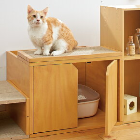 キャットレストルームトップ幅60×奥行52×高さ45cm猫トイレ爪とぎダンボールペピイ2018夏