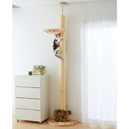 235cm〜255cmの伸びり棒キャットタワー