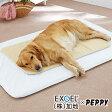 エクスジェルマット M(50×60cm)【介護 介護マット 介護用品 ベッド クッション シニア 老犬 老齢犬 体圧分散 床ずれ防止 寝たきり 中型犬 大型犬 国産 日本産】PEPPY(ペピイ)